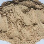 乾燥マッシュルーム粉末