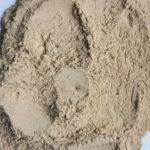 乾燥ポルチーニ粉末